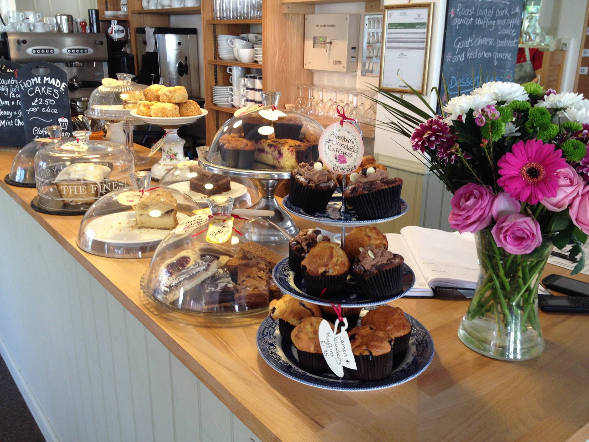 Upwey Wishingwell Tearooms And Water Gardens - Weymouth, Dorset DT3 5QE - 01305 814470 | ShowMeLocal.com