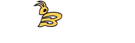 Buzz Plumbing Pty Ltd