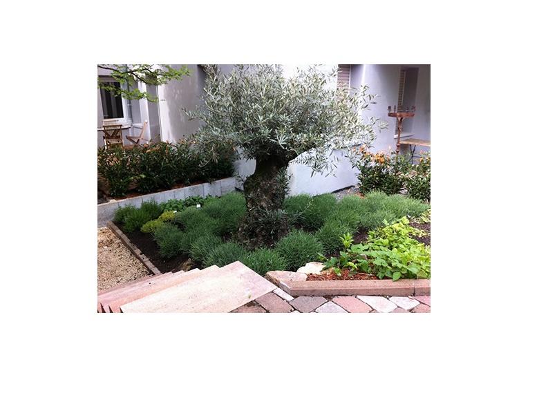 Locher Der Gärtner