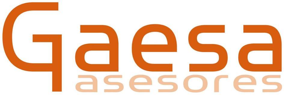 GAESA ASESORES