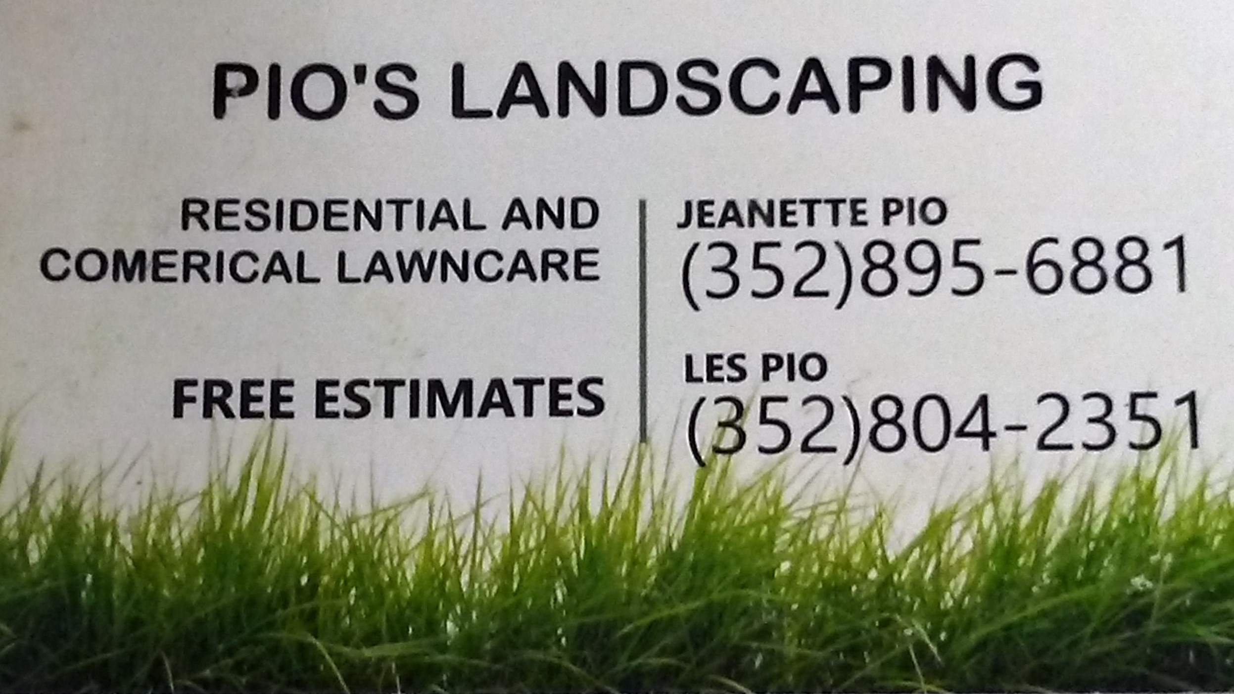 PIO LAWN CARE AND LANDSCAPING