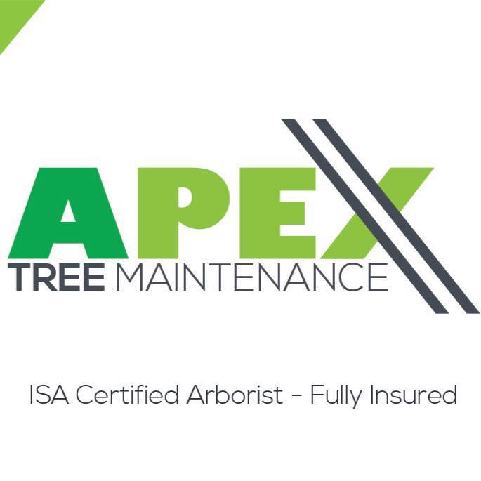 Apex Tree Maintenance