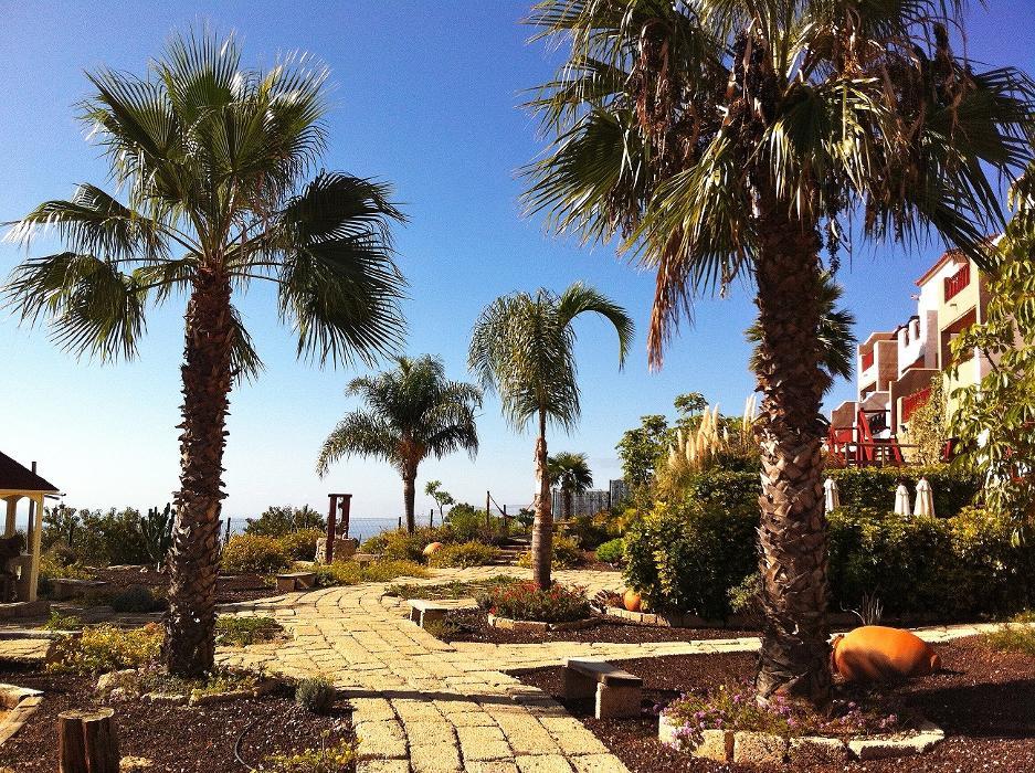 abclocal - Erfahren Sie mehr über Eco- Finca Vistabonita in San Miguel