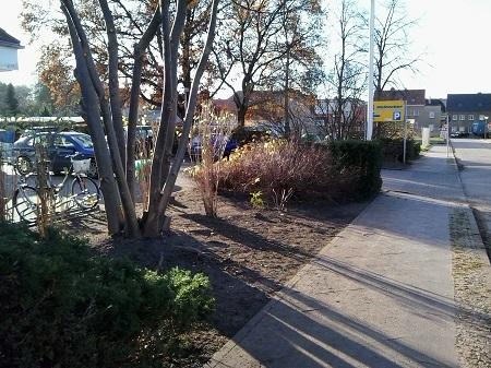 Wir übernehmen die Pflege von Grünanlagen in Gärten, Grundstücken, öffentlichen Anlagen, gewerbeobjekten in Potsdam, Berlin und Umgebung mit Entsorgung von anfallenden Abfällen.