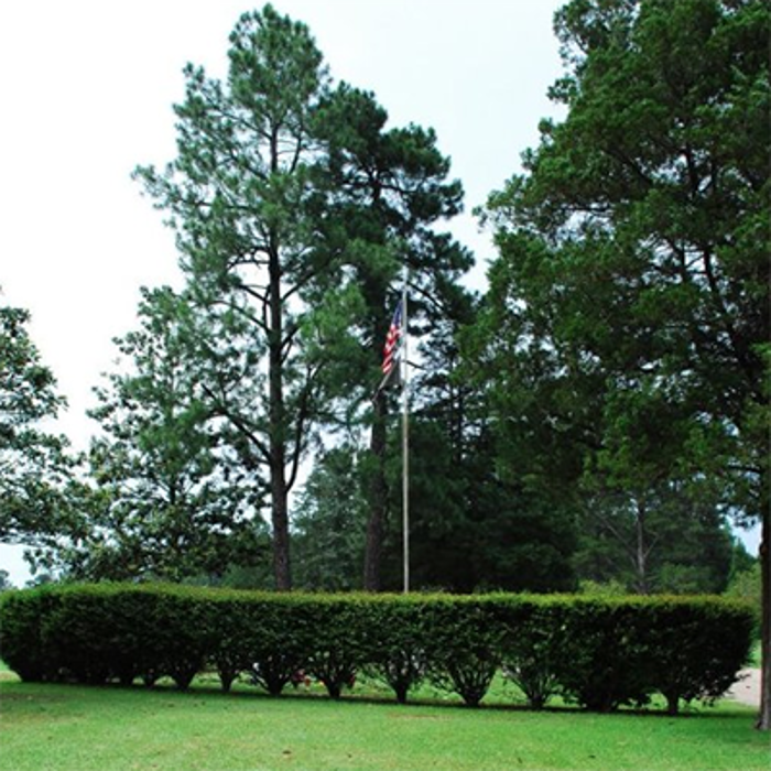 Colonial Gardens Cemetery - Marshall, TX