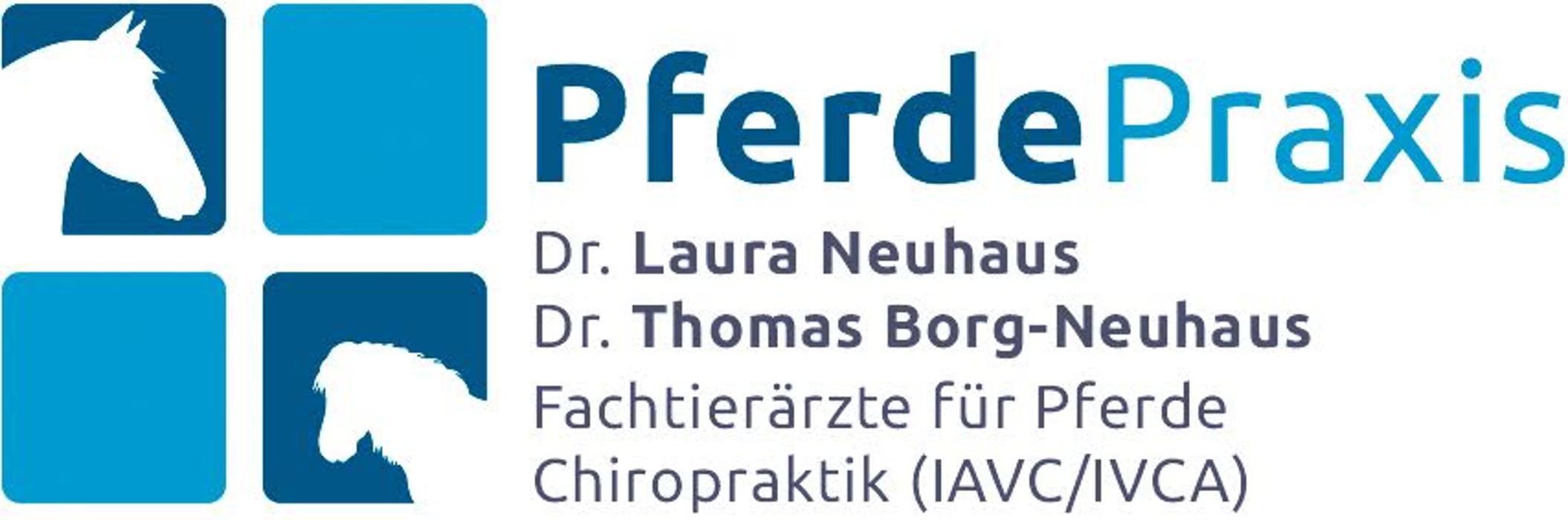 Bild zu Pferdepraxis Dr. Neuhaus & Dr. Borg-Neuhaus in Dortmund