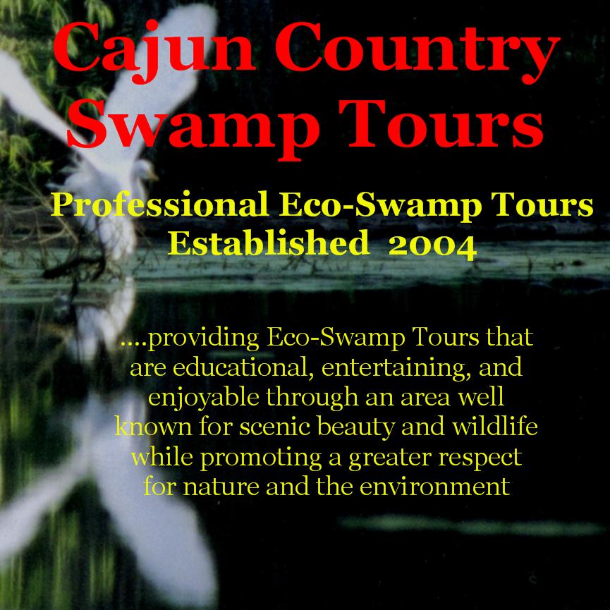 cajun country swamp tours