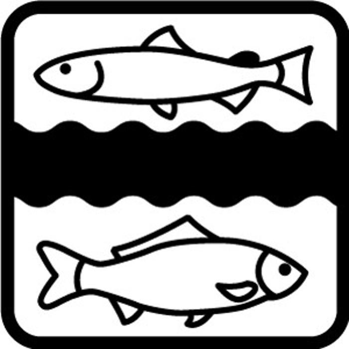 Bild zu Erzgebirgs-Fisch GbR in Pfaffroda Stadt Olbernhau