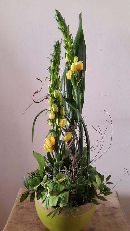 L'Abutilon Art floral