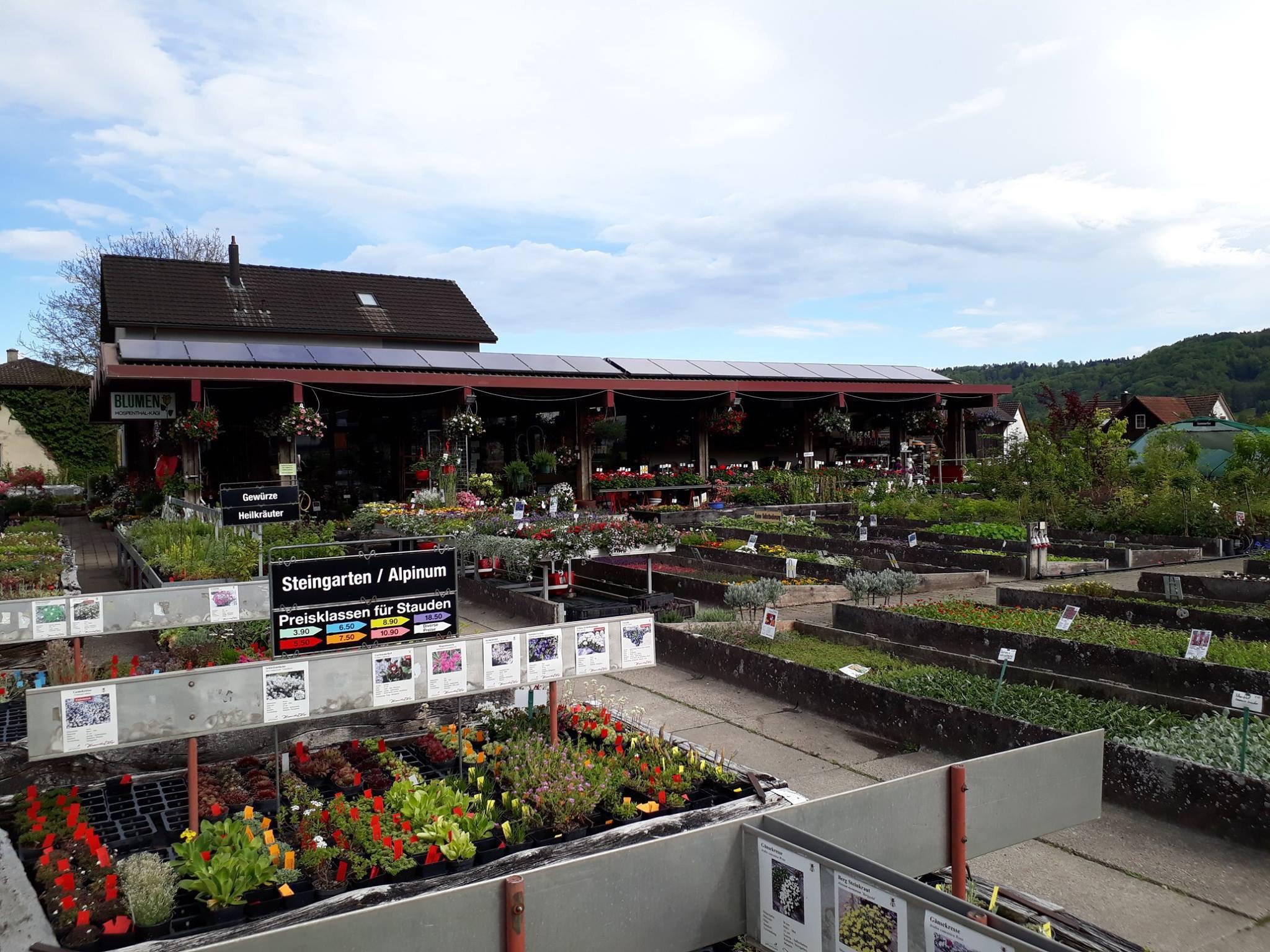 Hospenthal - Kägi AG