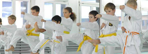 Kimura Karate Akademie