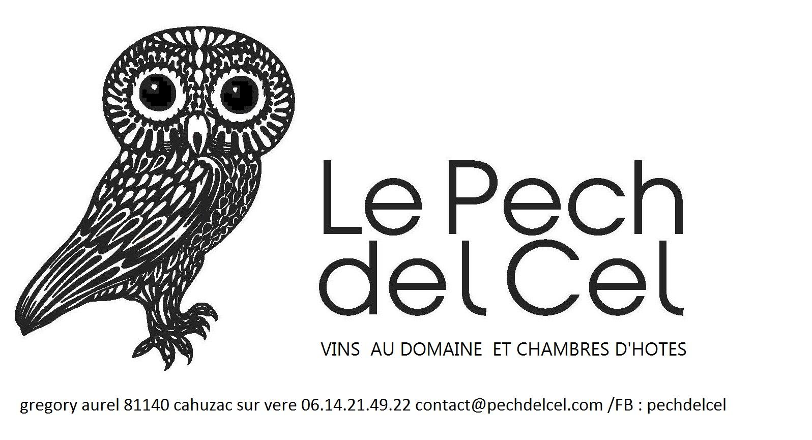 Domaine Pech Del Cel - Grégory Aurel