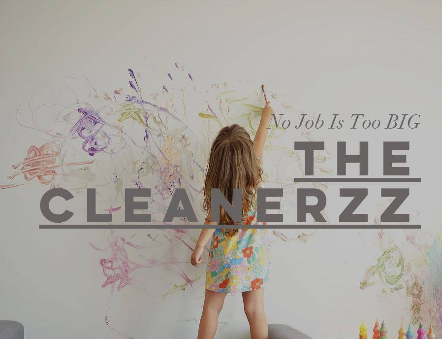 The Cleanerzz - Canley Vale, NSW 2166 - 0431 193 577 | ShowMeLocal.com