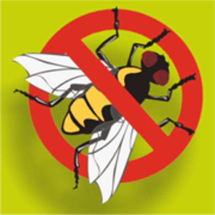 Bild zu Insektenschutz Krefeld in Kempen