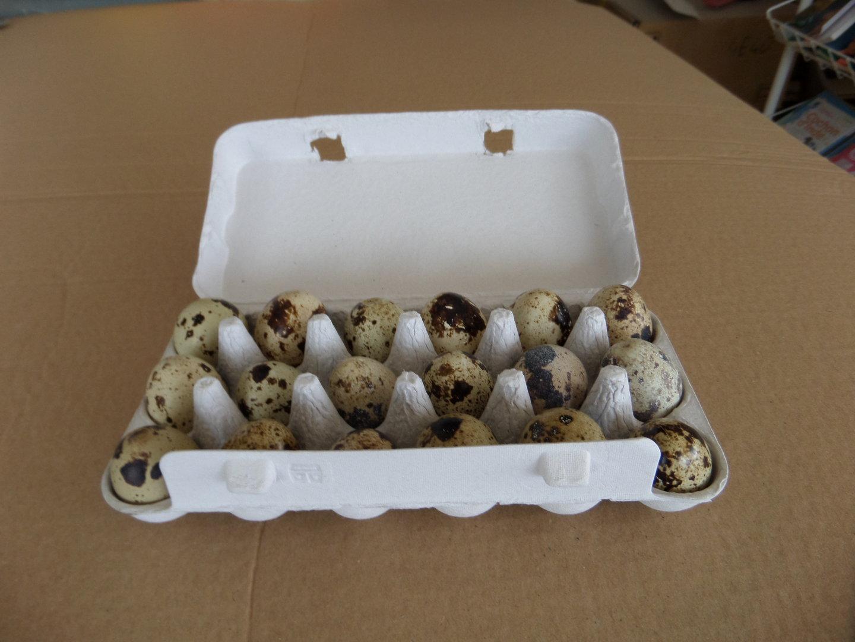la lapiniere - SARL MISCHA