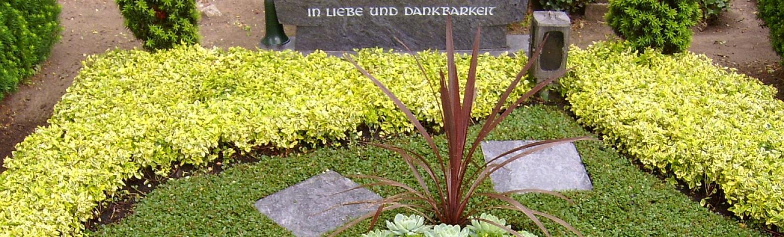 garten rasen in magdeburg infobel deutschland. Black Bedroom Furniture Sets. Home Design Ideas