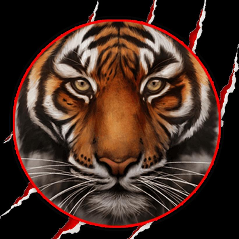 Glass Tiger Window Tinting