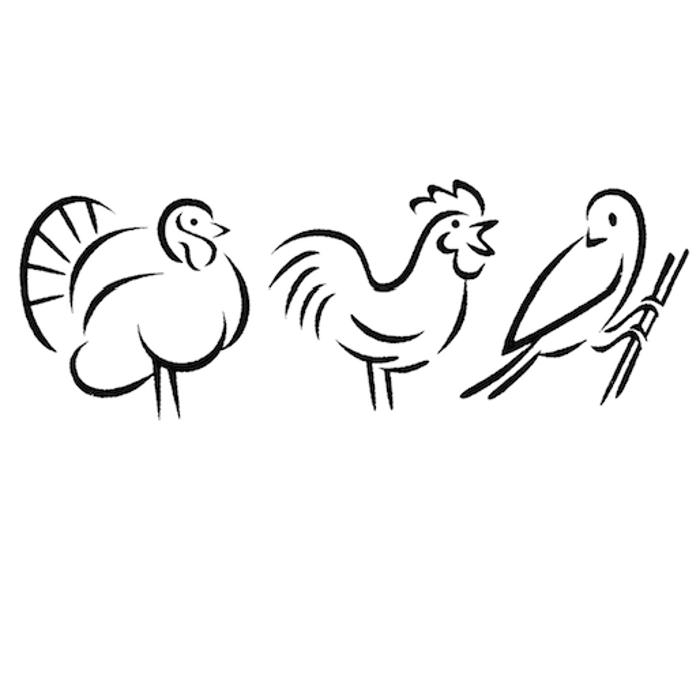Bild zu Vogeltierarzt Dr. Alexa Vaupel in Hoeningen Gemeinde Rommerskirchen