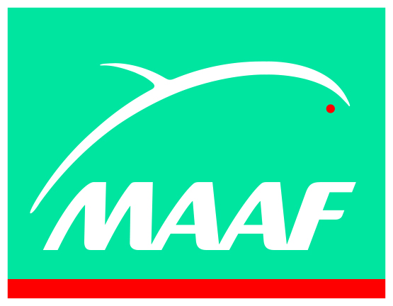 MAAF Assurances YSSINGEAUX
