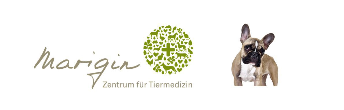 MARIGIN - ZENTRUM FÜR TIERMEDIZIN