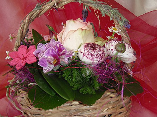 Crot Fleurs