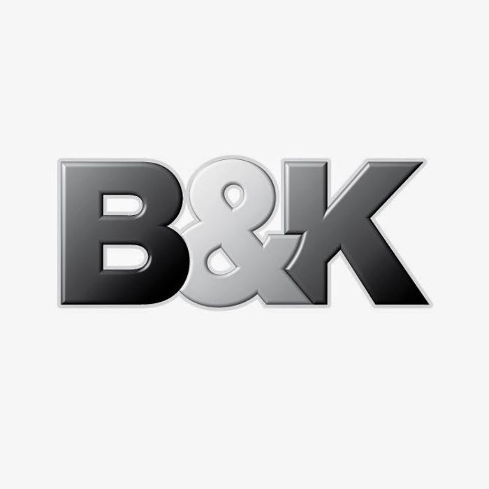 Bild zu B&K GmbH & Co. KG in Stendal