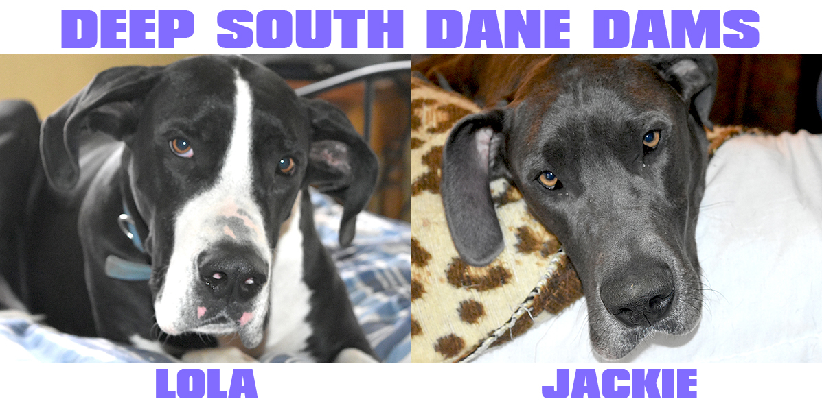 Deep South Danes