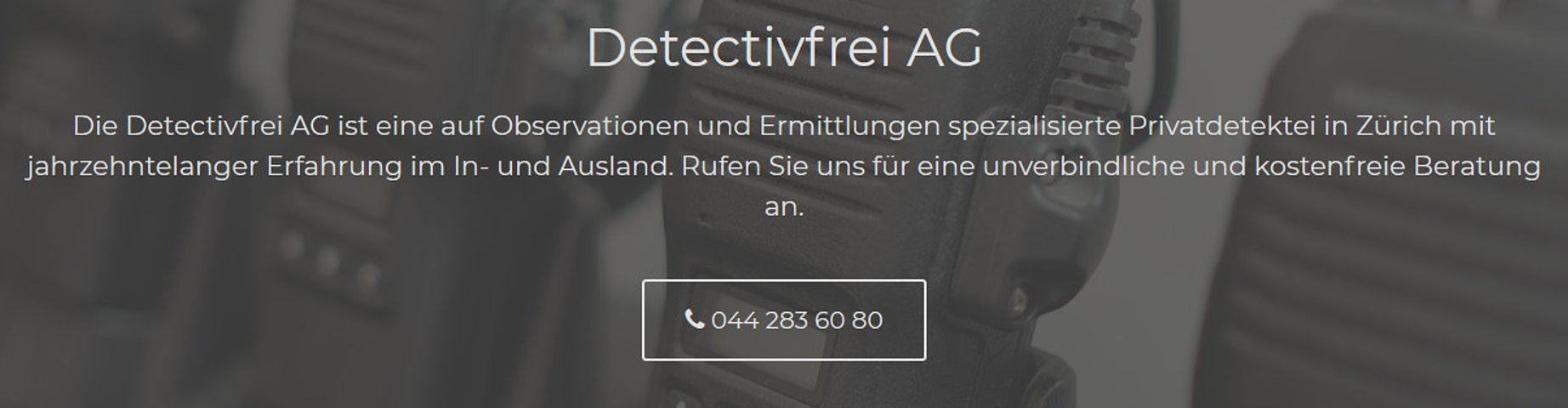 Detectivfrei AG