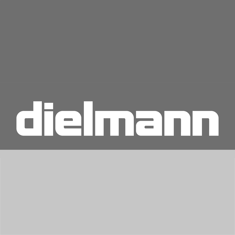 Schuhhaus dielmann Logo
