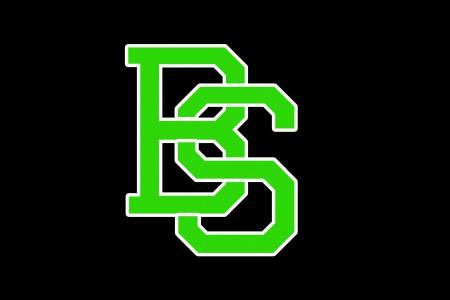 Логотип команды Bad Skid