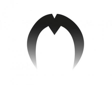Логотип команды Mooncatchers