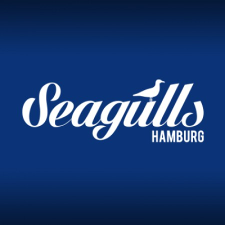 Логотип команды Seagulls