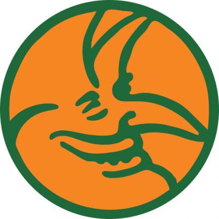 Логотип команды Hallunken
