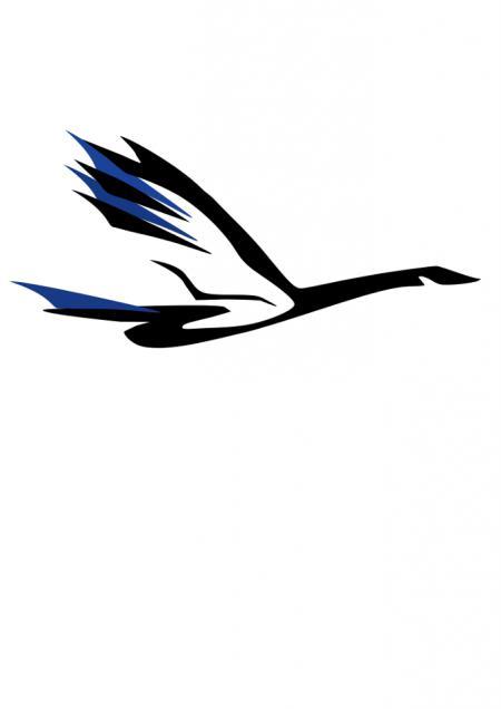 Логотип команды Akka