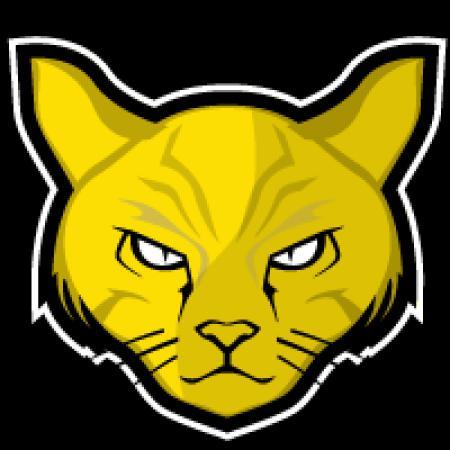 Логотип команды Disckatus