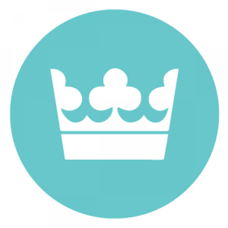 Логотип команды Stockholm Syndromes