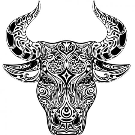 Логотип команды CUSB Red Bulls