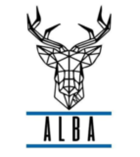 Логотип команды Alba