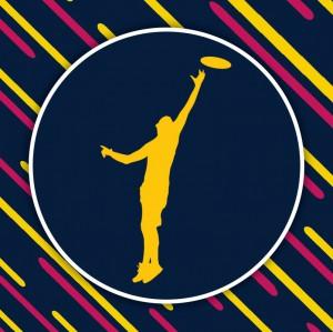 Логотип турнира 2 этап МЛР 2017