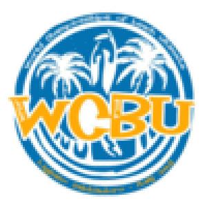 Логотип турнира WCBU 2011