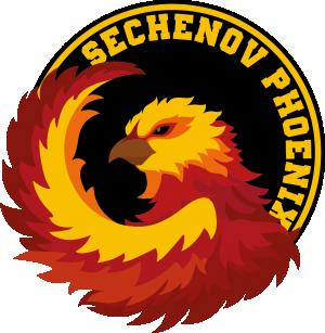 Логотип турнира Шляпа в Сеченовке