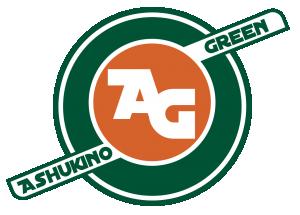 Логотип турнира Ashukino green 2019