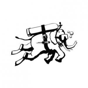 Логотип турнира Windmill Windup 2012