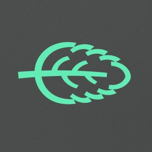 Логотип турнира Jozbee 2017
