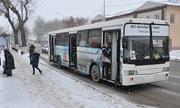Bus_29.11.18