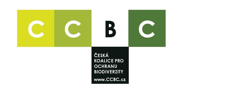 Nadační fond CCBC
