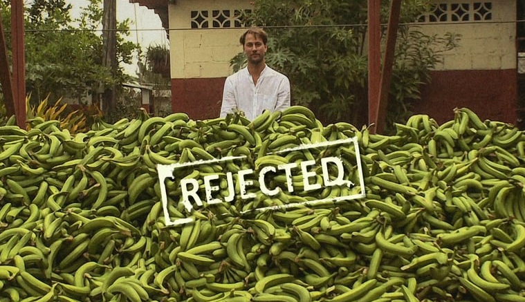 These bananas will go wasted because they are rejected by supermarkets due to their non-standard shapes or sizes. (Photo: Feedback/Tristam Stuart)