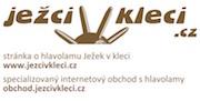 rademic_zahada_logo_1