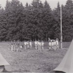 Helena Illnerová na táboře
