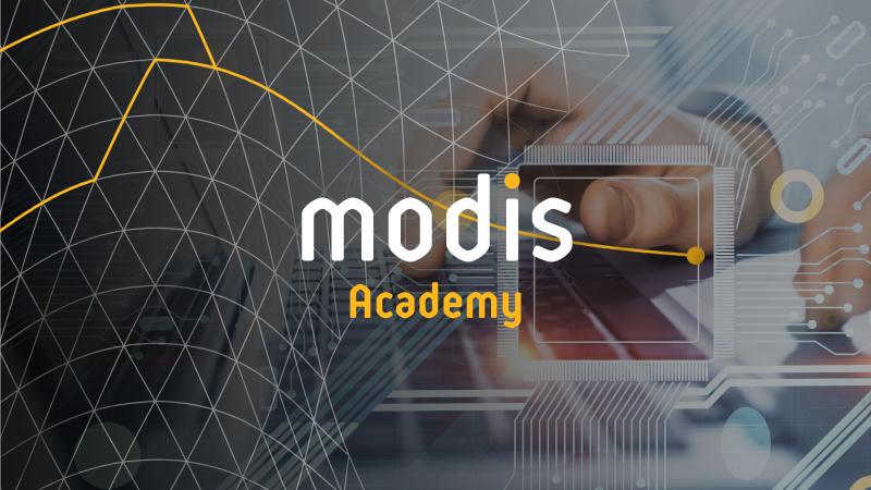 Modis Academy: il ponte tra università e mondo del lavoro image